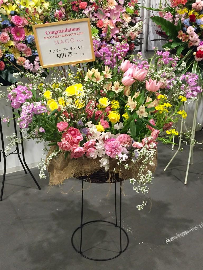 MACO 花 豊洲ピット